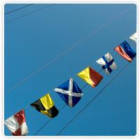 Signal Code Flags