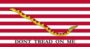 First Navy Jack Flag